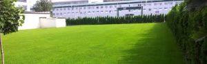Аккуратный зеленый газон — это просто